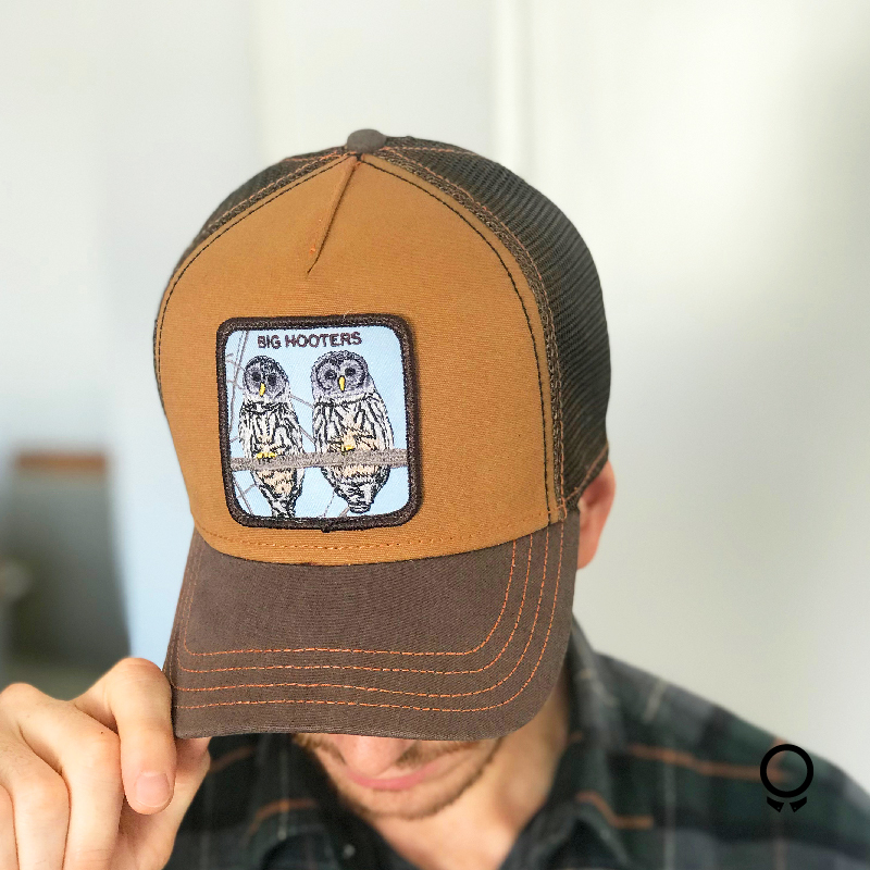 GORRA GOORIN BROS BIG HOOTERS MARRON